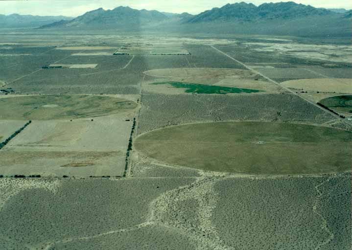 amargosa valley black personals The amargosa desert is located in nye county in western nevada, united states, along the california–nevada border, comprising the northeastern portion of the geographic amargosa valley, north of the ash meadows national wildlife refuge.